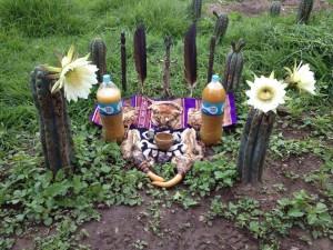Huachuma altar